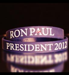 RP 2012 Official Logo Wristband